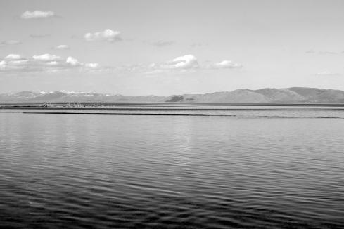LakeWater_B&W